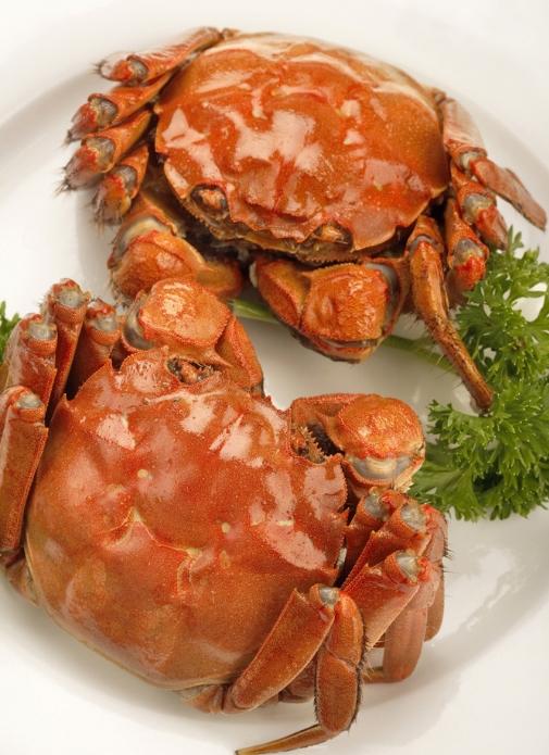 螃蟹四个部位不能吃