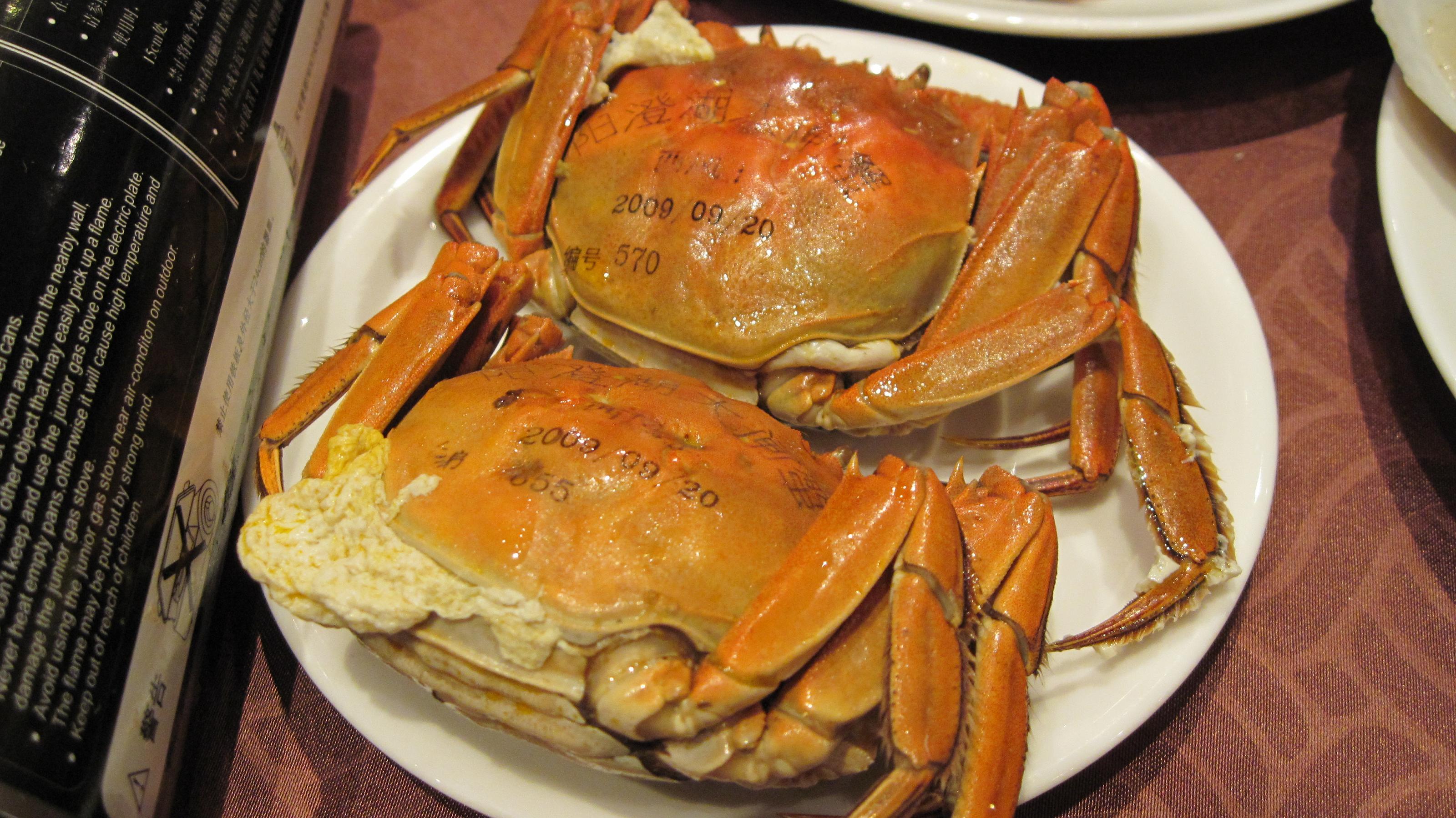 清明的幽幽的海鲜控空间-其他-美食专辑-哈尔滨美食推