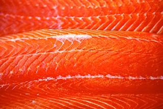 三文鱼的滋味 北挪威海鲜盛宴之旅