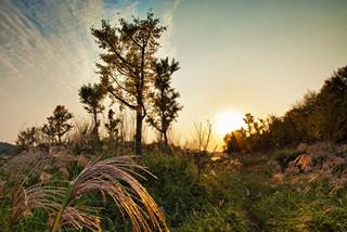 追寻诗人足迹 感受池州城区最美风光
