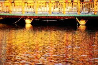 找寻古海岸的痕迹 品味北方水乡之秋 我的天津之旅