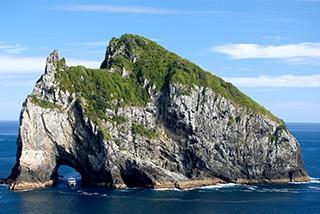 新西兰岛屿湾4日自驾 欣赏别样风光