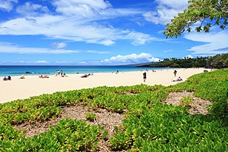 探秘夏威夷世外桃源 火山大岛3日自驾游