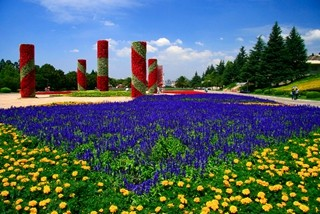 行摄漫步彩云之南 休闲寻访美丽春城 A1路逛昆明两日游