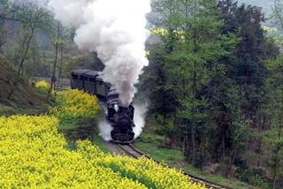 搭乘开往春天的火车 乐山犍为小清新之旅