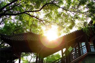 朝阳古城  一脉千年的美景