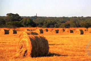 现代田园赞比亚 卢萨卡近郊1日游
