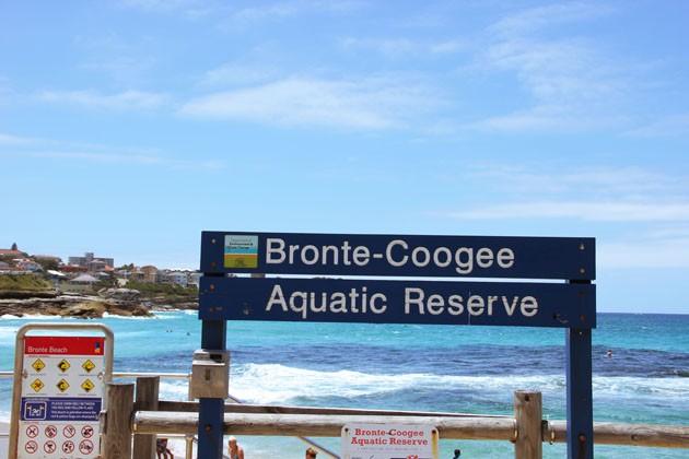 第三天:悉尼的海上游泳池——邦迪海滩 邦迪海滩 4小时