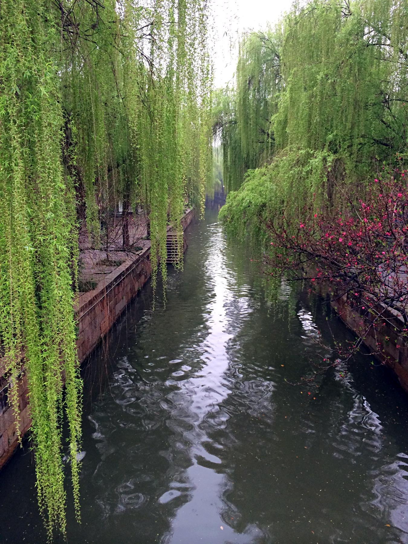睿见江南走读湖州 湖州文化之旅