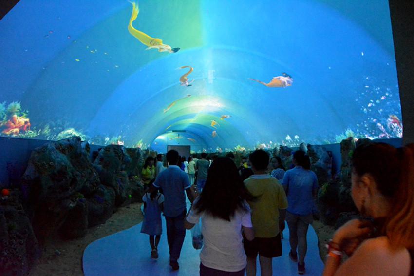 壁纸 海底 海底世界 海洋馆 水族馆 850_566