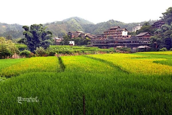 柳州风景区一天游_柳州旅游风景区