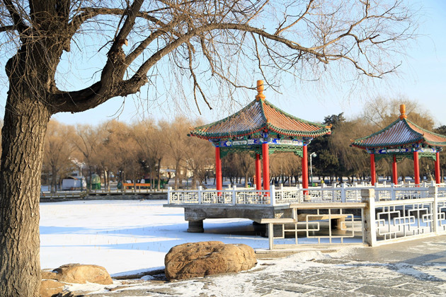 史上最长寒假来长春感受不一样的校园攻略_长雷伊雪景图片