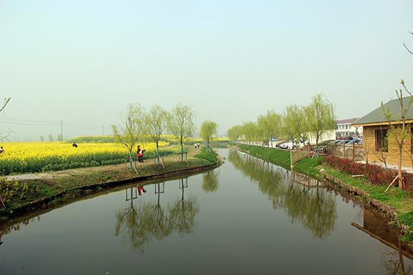 常阴沙生态农业旅游区位于张家港东部,濒临长江,是江南地区鲜有的