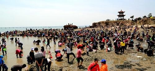 结合红岛的韩家民俗村,红岛青云宫,红岛赶海观光园,方特梦幻王国,红岛