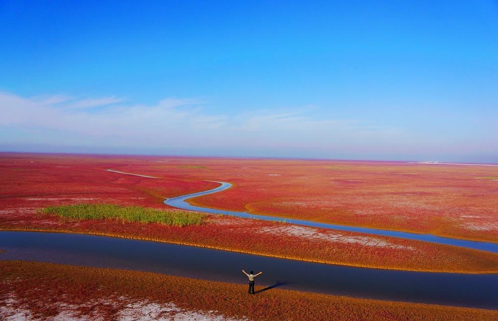 漫步黄河口生态旅游区