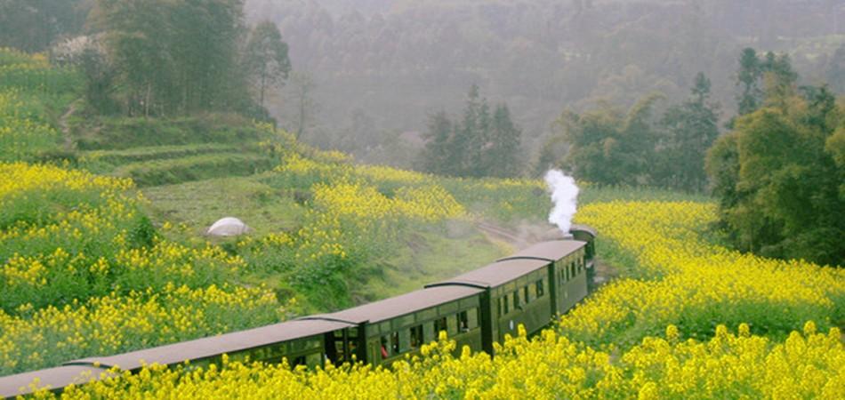 搭乘开往春天的火车乐山犍为小清新之旅