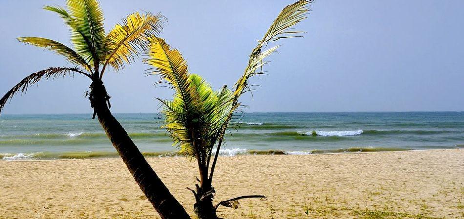 东郊椰林的美