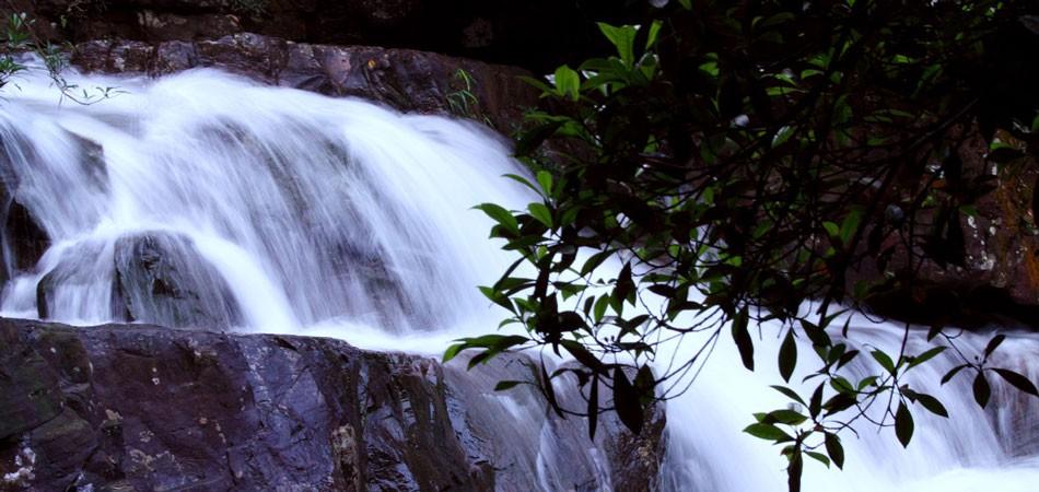 发现钦州灵魂之美 爱上山水楹联文化