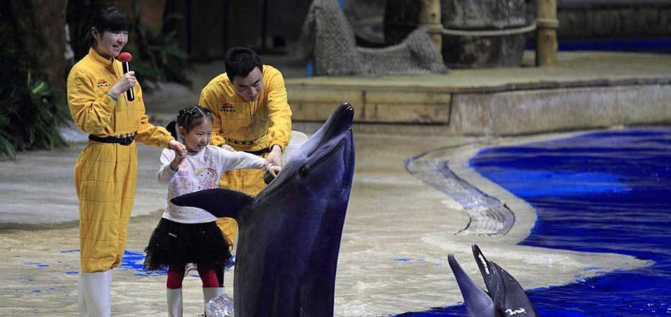 回归纯粹童话世界北京海洋馆游攻略_海淀攻略景点