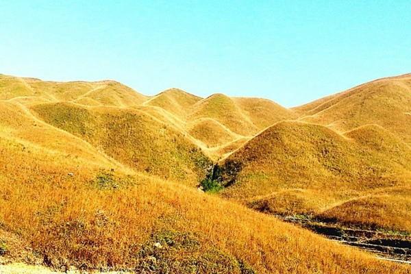 秋色鸳鸯头草场