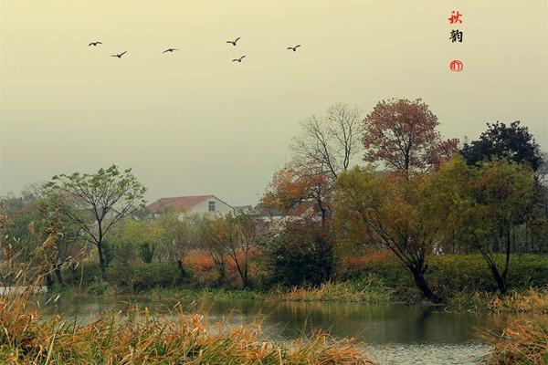 南临太湖,三面环山 533喜欢 浙江省湖州市长兴县风景和旅游管理局购买