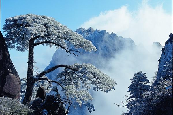 黄山の画像 p1_35