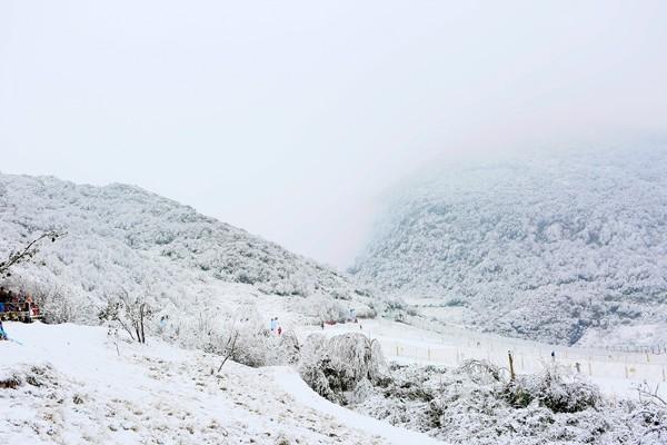 冰雪金佛山