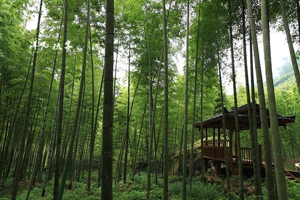 桂林风景秀丽,以漓江风光和喀斯特地貌为代表的山水