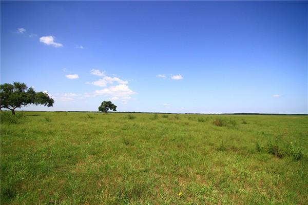 银沙湾草原