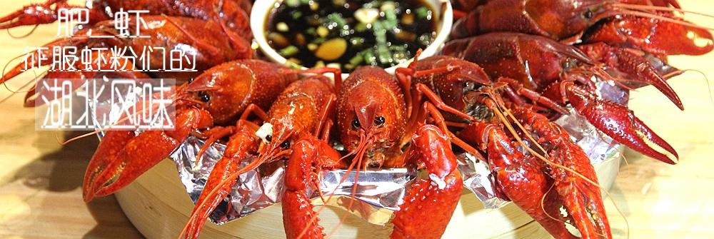 征服虾粉们的小红甲